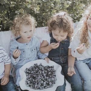 Enfants qui mangent des camerises